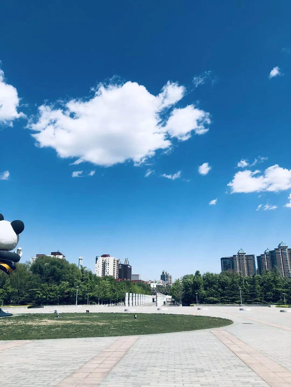 【国奥越野夏令营开营啦】今年暑假你不能错过的夏令营!